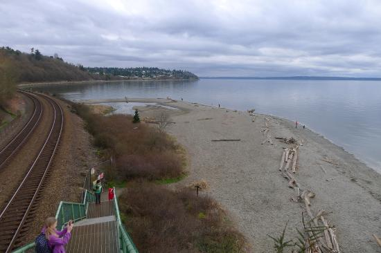 Carkeek Park: View from the bridge