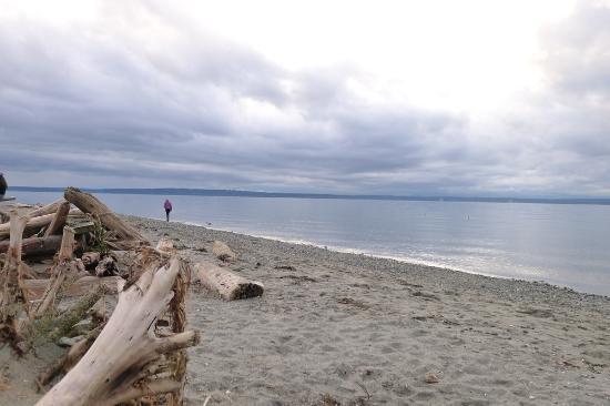 Beach at Carkeek Park