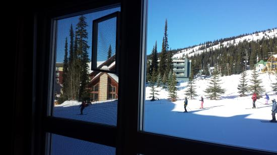 White Crystal Inn: my morning view.........