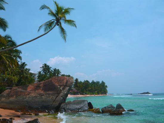 Unawatuna, Sri Lanka: Beach