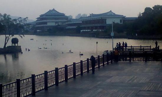 Wuyuanwan Wetland Park: 五緣灣的黃昏,如此清靜、悠然。