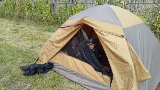 Jim Leopard C& Pitching tents & Pitching tents - Picture of Jim Leopard Camp Ramnagar - TripAdvisor