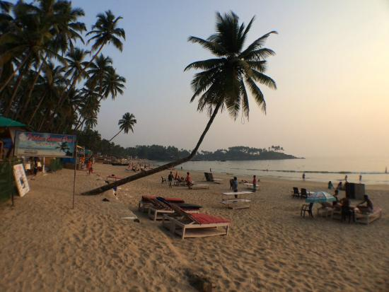 Gorgeous sunset! - Picture of Palolem Beach, Canacona - TripAdvisor