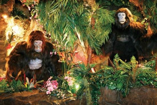 Rainforest cafe london soho restaurant reviews phone for Rainforest londra