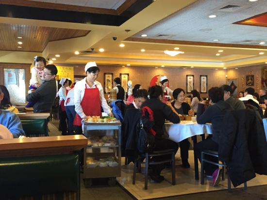 Qin Dynasty Parsippany Restaurant Reviews Photos Phone