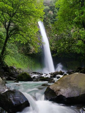 Catarata La Fortuna: La Fortuna Waterfall, from the downstream pool by TimMulholland.com