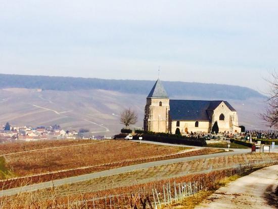 Champagne Route (Route Touristique du Champagne) : Near Chavot.