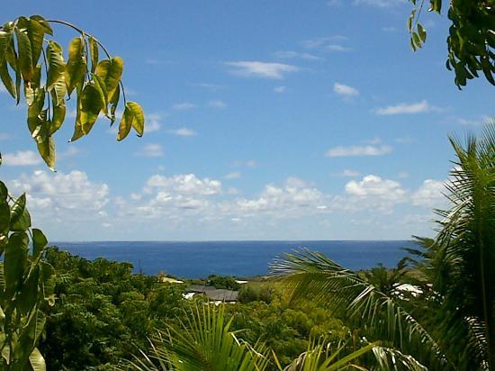 Tekarera Kainga Ora & Kainga Nui: View from the deck of Kainga Nui