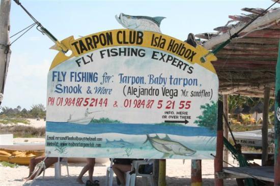 Holbox Tarpon Club: Tarpon Club.