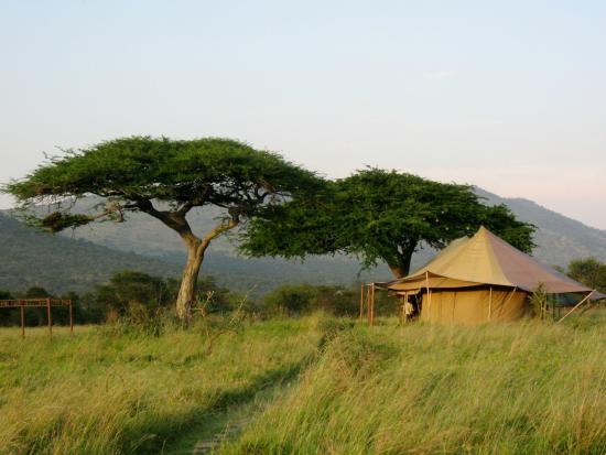 Asanja Africa: La tente mess où sont servis les repas.Le soir, il y a un grand feu sous les acacias