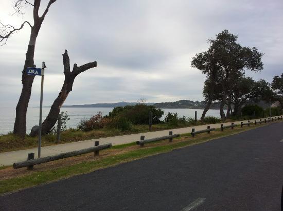 South Coast Holiday Parks Eden: Morning Eden