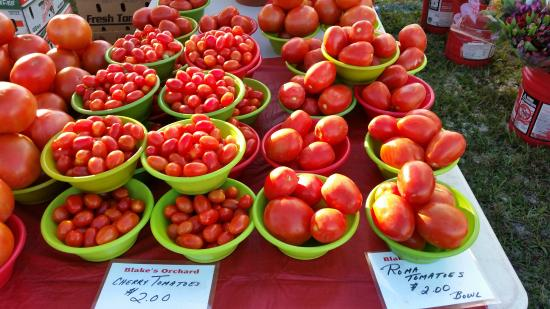 ‪Marco Island Farmers Market-Wednesday- Mid November to Mid April‬