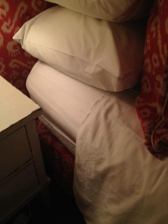 Stony Brook, Estado de Nueva York: There were 3 bed bugs (two on the mattress one on the pillow