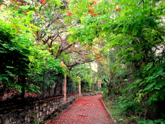 Parque da Muritiba