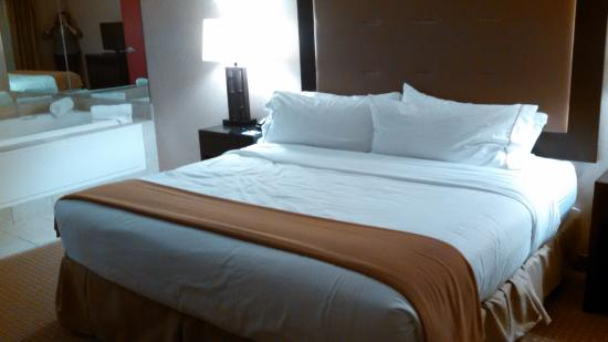 Holiday Inn Express Hotel & Suites Olathe North: bed