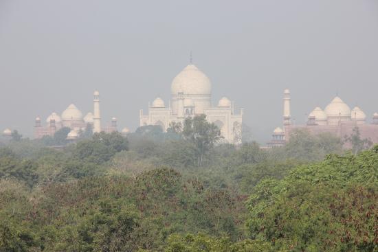 Hotel Atulyaa Taj: View of the Taj Mahal from the Atulyaa Taj roof garden