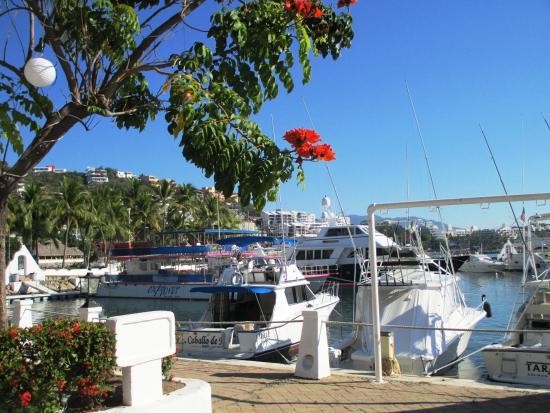 Manzanillo Bay from Las Hadas Marina