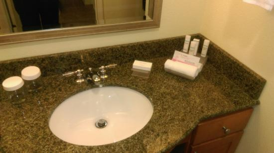 Homewood Suites by Hilton Bethlehem Airport: Room 213