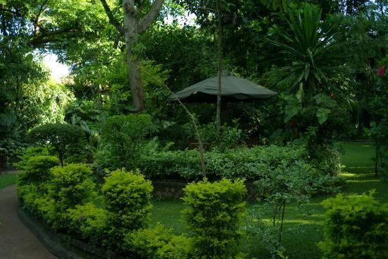 The 140: More garden