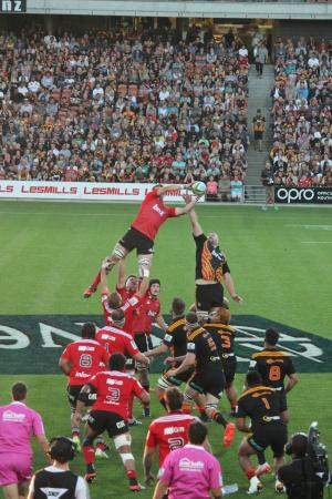 Waikato Stadium : Not bad viewing for $25