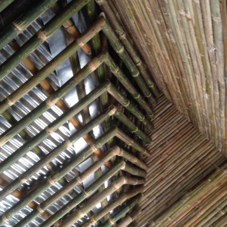 Bamboo House Design Picture Of Chitwan Resort Camp Pvt