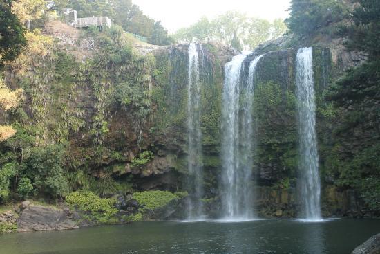 Whangarei, Nueva Zelanda: Excellent from the bottom