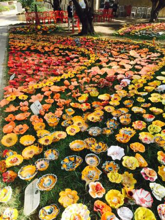 Eretz Israel Museum Complex (Haaretz Museum): Example of one of six or more plots densely packed with loads flower types and colors. What a to