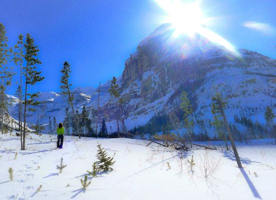 Stanley Glacier Hike : Headed up on a stunning February afternoon