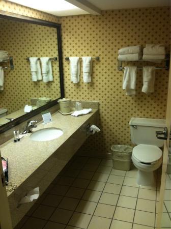 AmericInn Hotel & Suites Indianapolis : Nice-sized bathroom (1King Bed room).