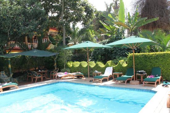 Comfort Gardens Guest House: Zwembad