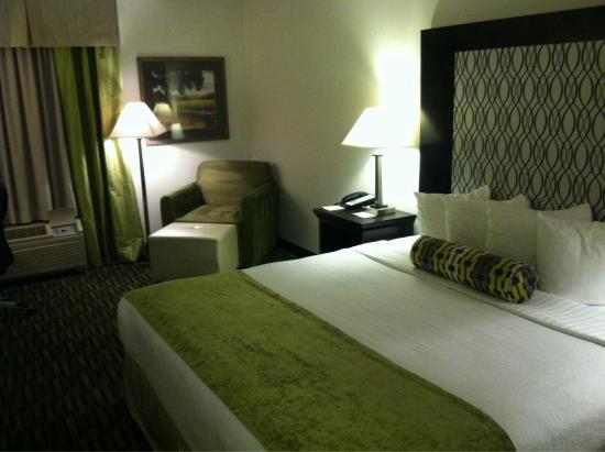 "Wyndham Garden Wichita Downtown : 1 King Bed room. Some would call this room ""small,"" I prefer to say ""European style."""