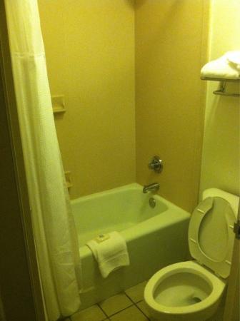 Wyndham Garden Wichita Downtown : Toilet/shower room.