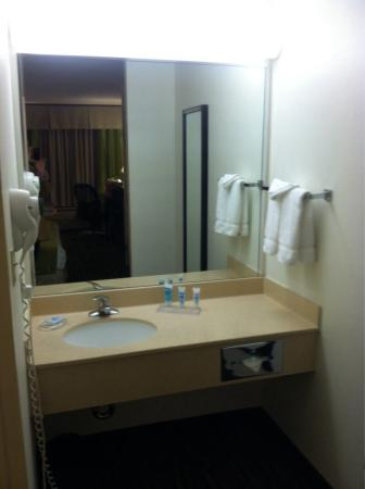 Wyndham Garden Wichita Downtown: Sink is outside the toilet/shower room.