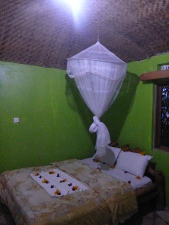 Wagtail Eco Safari Camp: Bedroom
