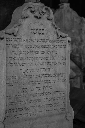 Chatam Sofer Memorial : Cemetery