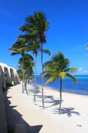 Sugar Beach Condo Resort: Sugar Beach, View from our room