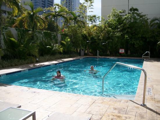 Perfect Temp Pool Water Picture Of Aloft Miami Brickell