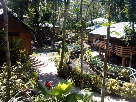 San Pablo City, Filipiny: Cottages and trees