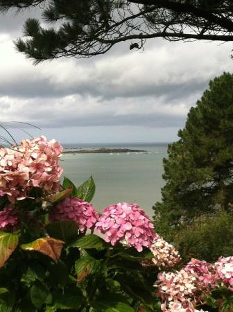 Breton Bikes : This was the view from our campsite on the English Channel. At Les Hortensias