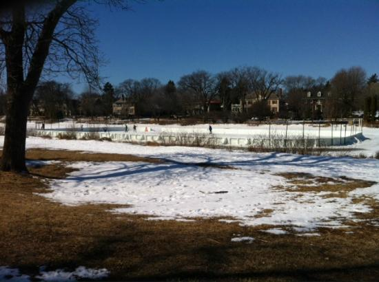 Hockey Rink on Lake of the Isles - Minneapolis, MN