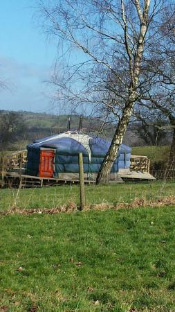Strawberry Skys Yurts: Amazing