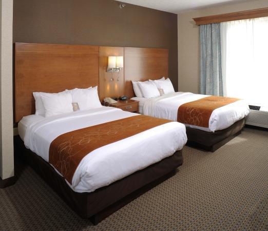 Comfort Suites: Double Queen Suite