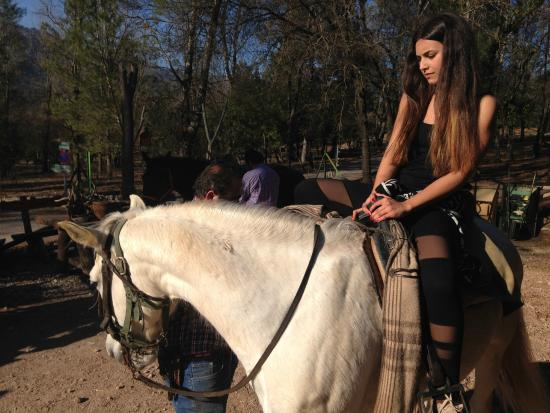 Cazorla, Spain: Ruta a caballo en Picadero El Cortijillo