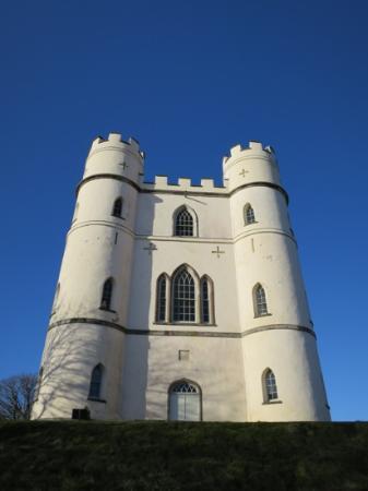 Haldon Belvedere (Lawrence Castle): Lawrence Castle