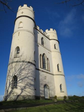 Haldon Belvedere (Lawrence Castle): Lawrence Castle in all it's glory