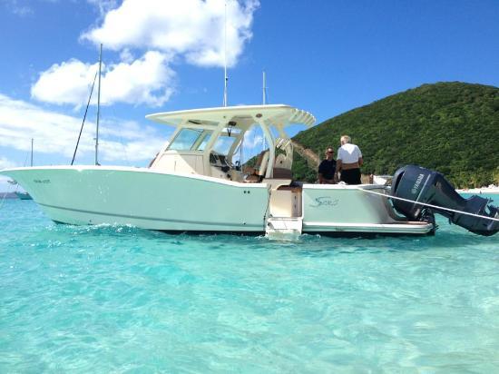 Island Explorer Charters
