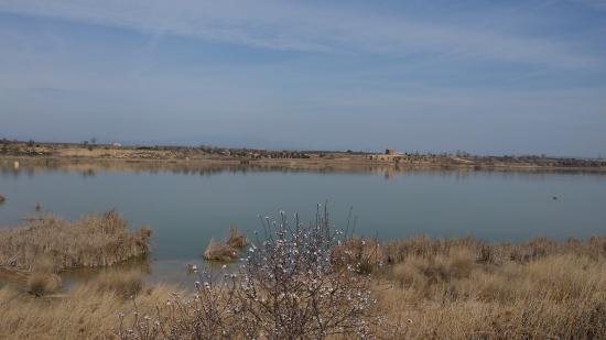Ivars d'Urgell, Spagna: getlstd_property_photo