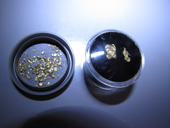 Dahlonega, GA: a nice haul from a typical bag of gold concentrates