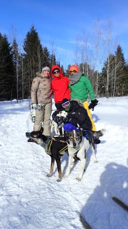Highland Wilderness Tours: We love the dogs