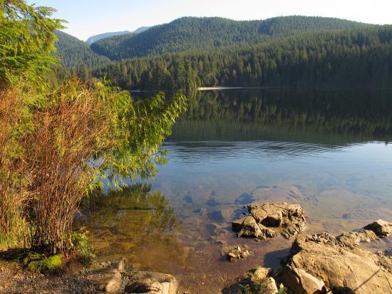 White Pine Beach (Sasamat Lake): lake